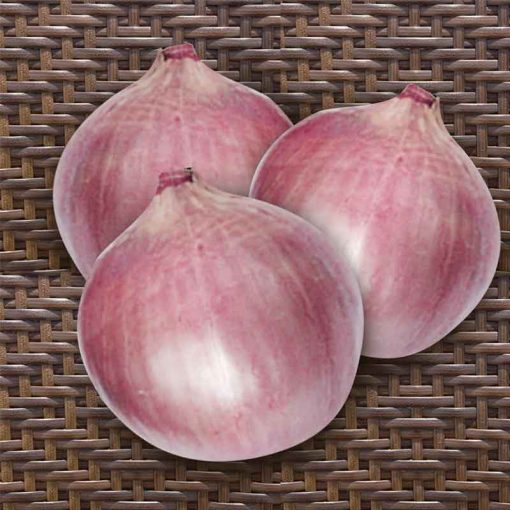 Pink Diamond F1 Hybrid Onion